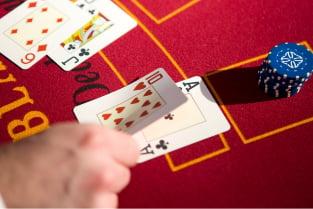 Tain wolverine casino Brasil 24391