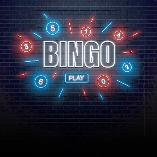 Bingo eletronico online old 13900