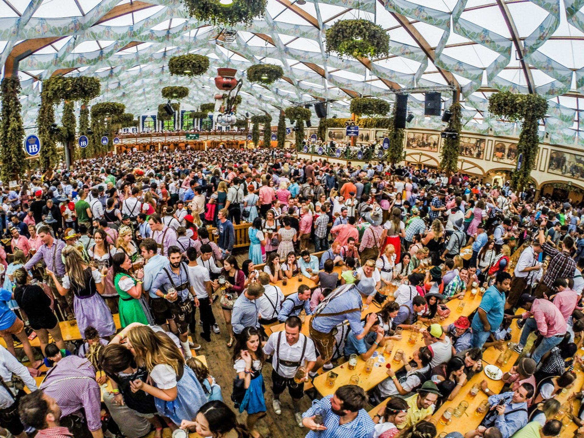 Oktoberfest ingressos 33171