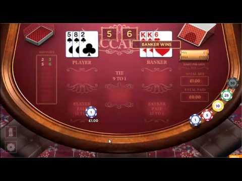 Casinos ash gambling 49097