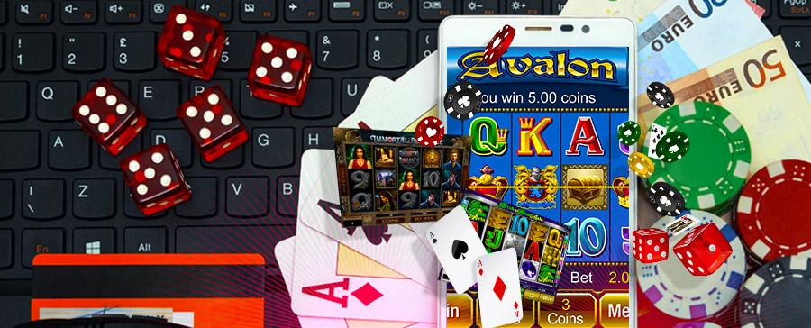 Pocket dice 44336