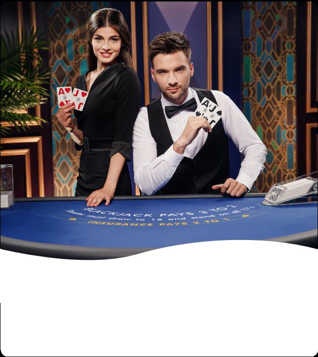 Wms gambling casino 25036